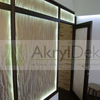 Transparent partition wall with rice in resin