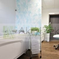 Translucent resin partition wall